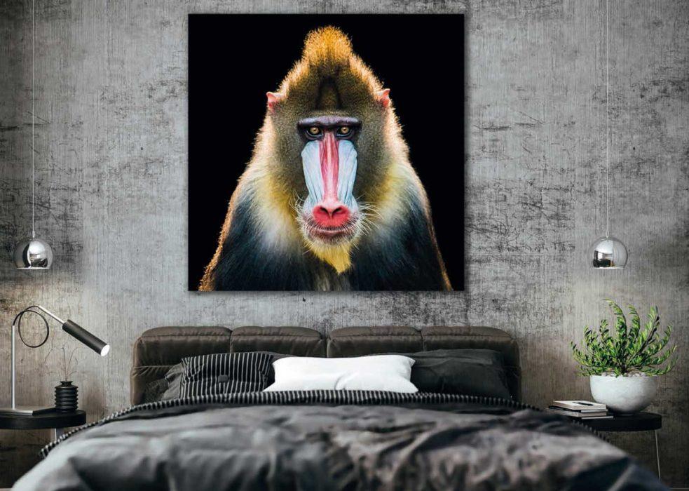 Foto 20: schilderij Cobra Art